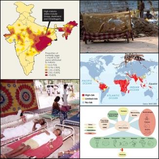 cholera-and-malaria